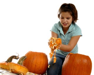 Child  cleaning out pumpkin seeds.